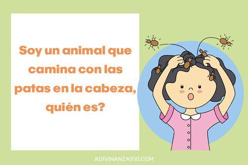 Adivinanzas Con Dibujos De Animales Adivinanzas Para Ninos Con Respuesta Adivinanzas Para Ninos Adivinanzas Y Acertijos Adivinanzas
