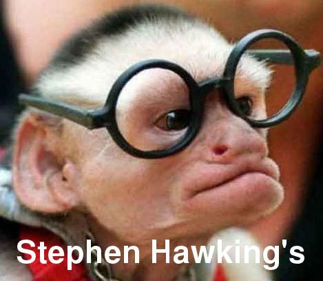 Funny monkey picture! Repin if you love this? XX