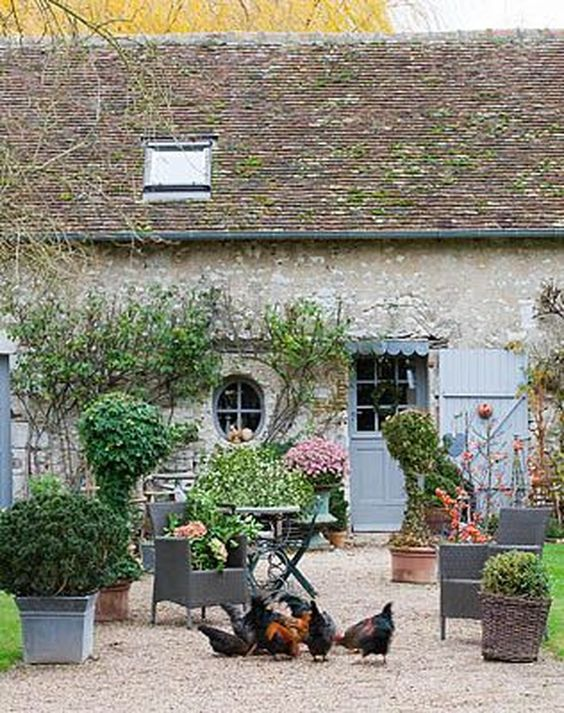 French farmhouse courtyard with chickens. Romantic French Country Garden Courtyard Ideas. #frenchfarmhouse #courtyard #garden #chickens