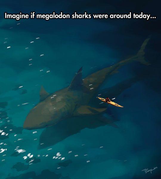 Megalodon Sharks: The Ocean Nightmare