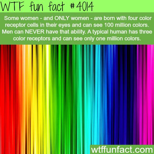 wtf weird interesting weird wtf fun weird true crazy facts weird facts