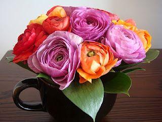 Fabulous colours + fabulous flowers