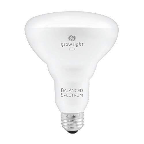 This Lightbulb Will Make Your Plants Grow Faster Than Outdoor Sunshine Grow Light Bulbs Led Grow Lights Grow Lights For Plants