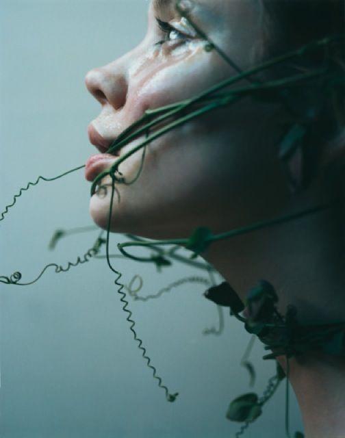 Poison ivy: