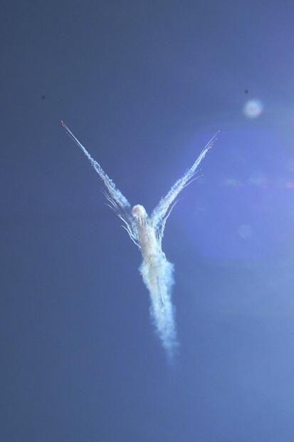 STRIZHI_RU | Strizhi Team info | Angel in the sky of Kubinka AFB