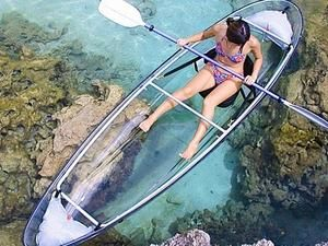 Cozumel Clear Kayak Snorkel Combo Excursion