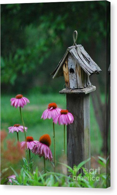 Spring Birdhouse Canvas Print by Lila Fisher-Wenzel