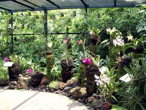 16f9f196f9b21a071980945519f2f965 - The Tavern Orchid Gardens Room Rates