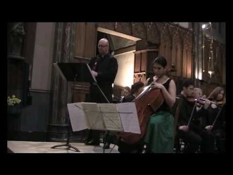 "Brahms - double Concerto violin and cello op102 en la mineur - 1er Mvt 1ère partie ""Allegro"" - YouTube"