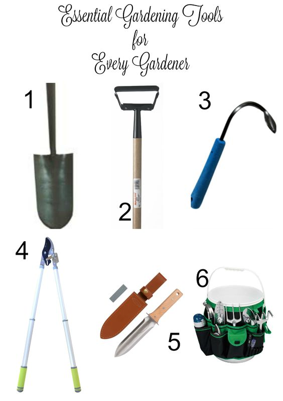 Essential gardening tools for every gardener gardens for Gardening tools you need