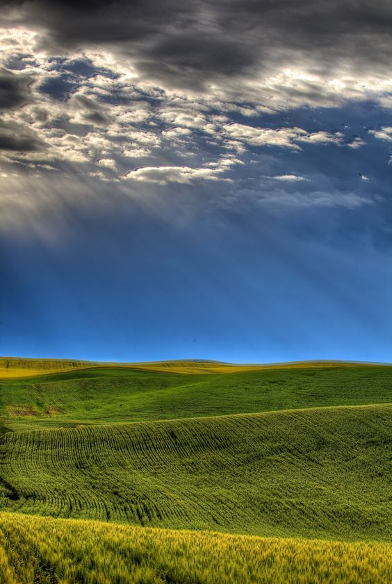 A thunderstorm dissipates shortly after sunrise in Washington State's Palouse country.