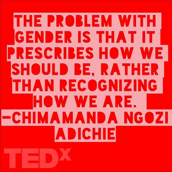 Chimamanda Ngozi Adichie Ted Speech.