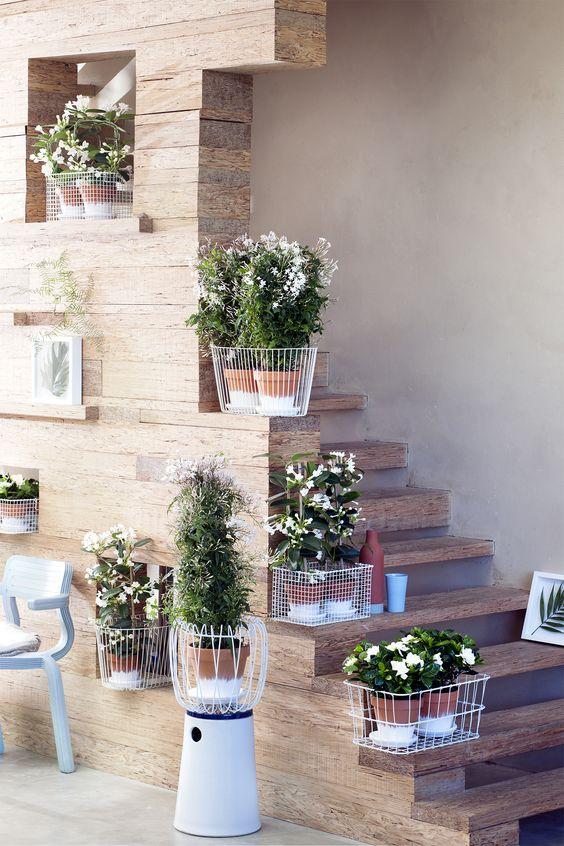 Weiße Blüten als fröhliche Pflanzenelemente – Pflanzenfreude.de