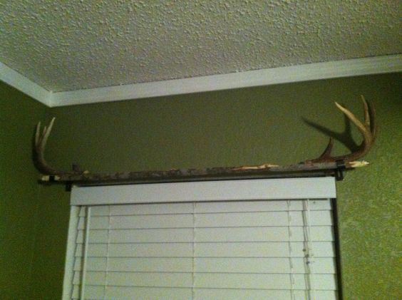 Homemade curtain rod: a long straight branch with antlers for end ...