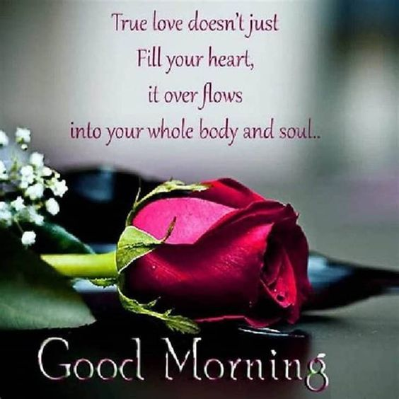 110 Good Morning Quotes Sayings Pictures And Images For Facebook Good Morning Quotes Good Morning Love Romantic Good Morning Messages