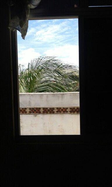 Abra sua janela pule o muro e seja livre de tudo o que te faz mal