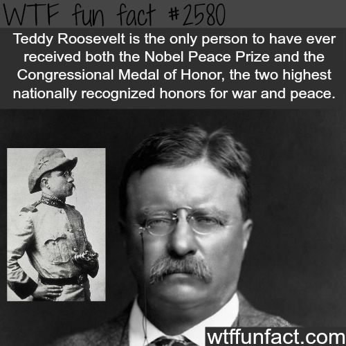 theodore roosevelt accomplishments during presedency Watch video on august 14, 1935, franklin d roosevelt signed the social security act into law to remember fdr, who profoundly changed america with his new deal programs, we're.