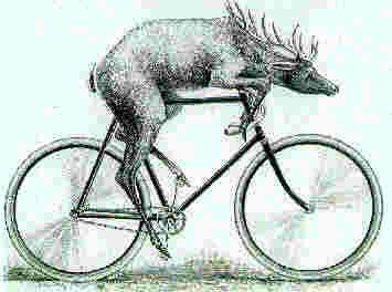Google Image Result for http://www.mindspring.com/~dagmara/graphics/deere2.jpg: Bikes 3, Deere Bicycles, John Deere, Vintage Bicycles, Bicycle Parts, Bicycles Fixed