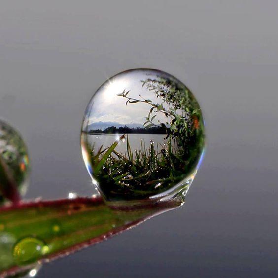Vue au travers d'une goutte d'eau