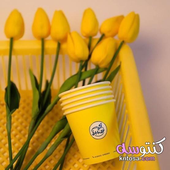 محبى اللون الاصفر صور لمحبين اللون الاصفر وطاقتهم اصفر استثنائيون من يعشقون اللون الأصفر Herbs Planter Pots Vegetables