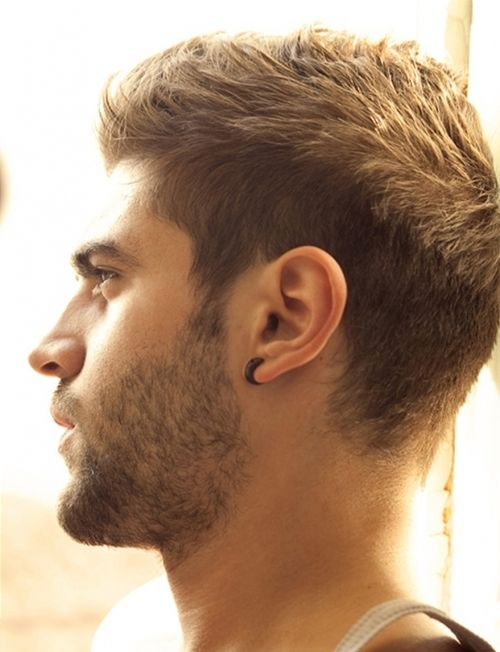 Outstanding Interesting Faces Kevin O39Leary And Beards On Pinterest Short Hairstyles Gunalazisus
