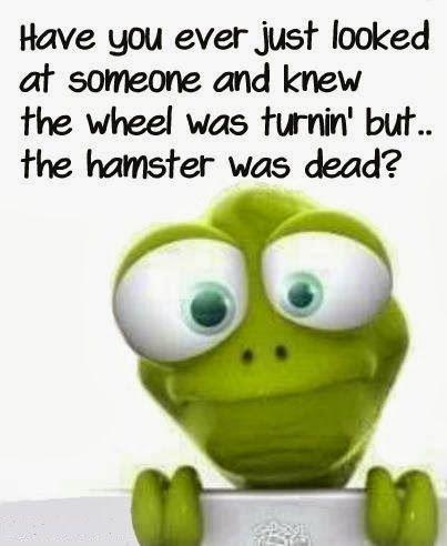 Funny Hamster Wheel Turning Dead Joke Meme Picture Funny