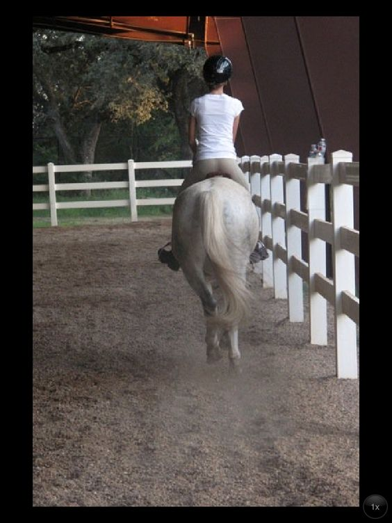 A girl and her horse, um pony, in the arena at Lone Star Stables in Austin, Texas.