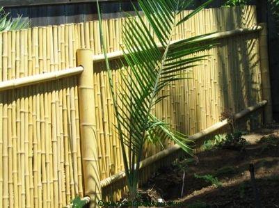 Clôture bambou et Palissade bambou, Brise-vue bambou