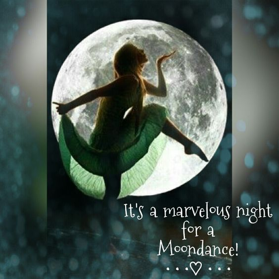 It's a marvelous night for a Moondance! ༺♡༻: