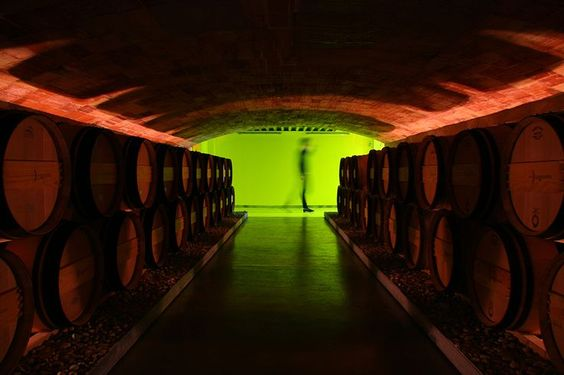 winery designs - Google Search
