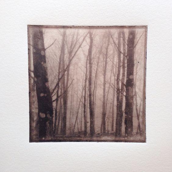 Björkdunge.  Graphic art print. Polymerprint. Made by @printingstories