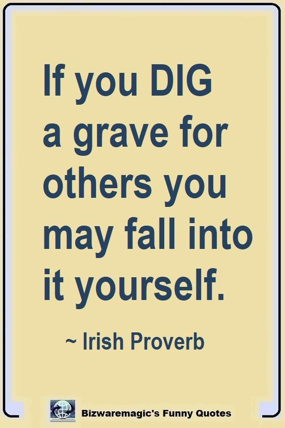 Top 14 Funny Quotes From Bizwaremagic Funny Quotes St Patricks Day Quotes Quotes