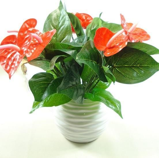 Artificial Anthurium Flower Plant Indoor Green Plants Artificial Flowers Indoor Flowers