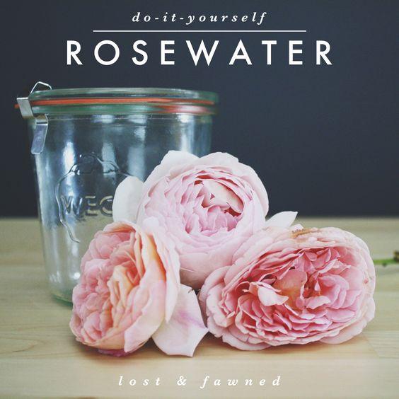 DIY // Rosewater: Method One
