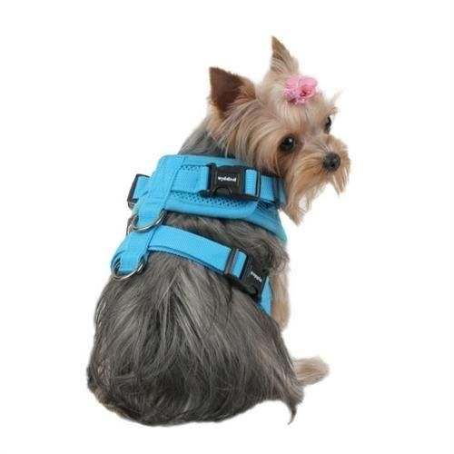Rite Fit Puppia Soft Dog Harness Dog Harness Dogs Dog Leash