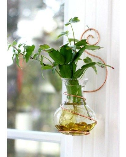 36 Marvelous Water Beads Ideas For Home Indoor Plants Plantas En