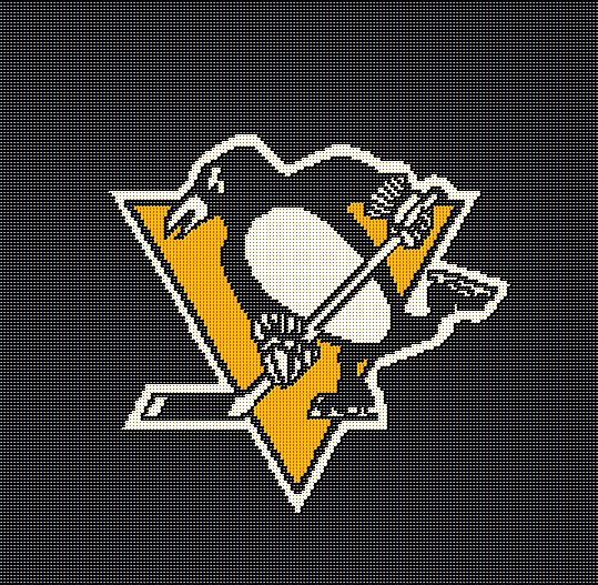 Crochet Hockey Afghan Pattern : Crochet afghan patterns, NHL and Pittsburgh penguins on ...