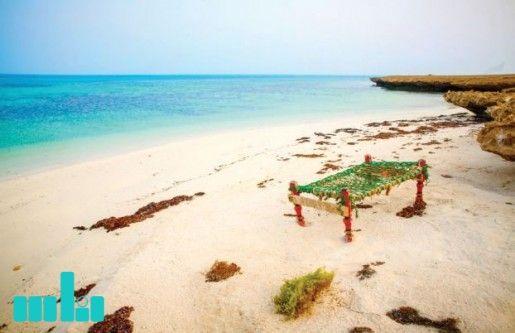 جازان تبدأ في تطوير وتأهيل جزر فرسان Outdoor Animals Beach