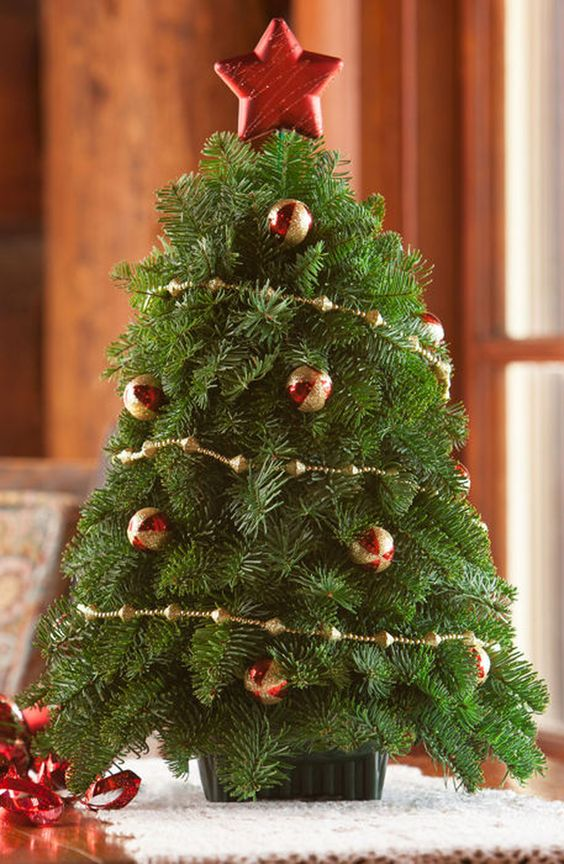 this beautiful fresh little tabletop tree will brighten many areas in the home the fully decorated christmas tree is handcrafted using mountain fresh beautiful fresh home