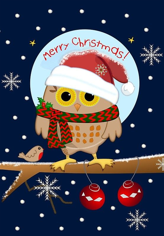 Cute Owl With Santa Hat And Text Cute Christmas Wallpaper Cute Owls Wallpaper Owl Wallpaper