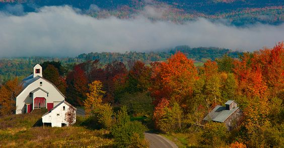 Snapdragon Inn | Vermont Wedding Venues | The Hitch