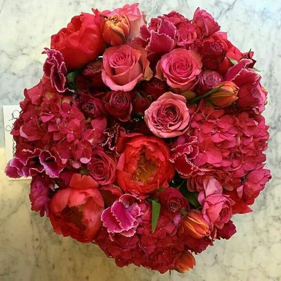 Flores para regalar!