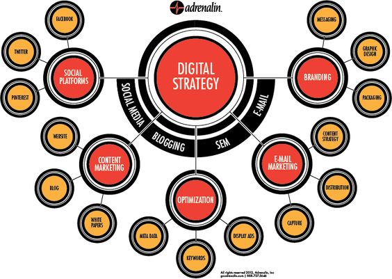 Digital Strategy Platform  Digiside Of The World