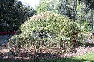 Cabane de saule nantes 44 jardin botanique 51210 redimen cabane pinterest nantes tags - Cabane jardin vosges nantes ...