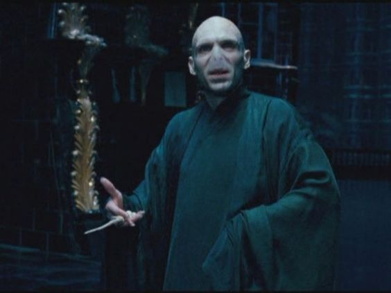 Which harry potter character will you have the same wand for Harry potter voldemort wand