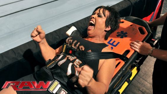 New Classes for Vickie, NXT Diva with Main Roster, Flirting with Fandango http://dailywrestlingnews.com/?p=63018