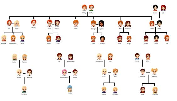 Harry Potter Original generation and next generation. Love this SUPER accurate family tree <3