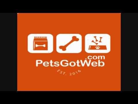 بيتس جوت ويب لشراء وبيع الحيوانات الأليفة تقدم لكم مواصفات الخيل العربي Gaming Logos Logos