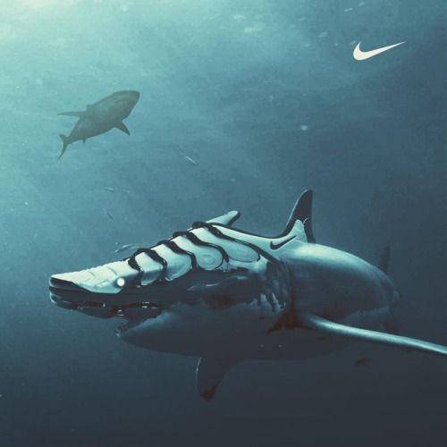 Instagram Brudz C Fond D Ecran Dessin Fond Ecran Nike Nike Requin