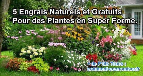 5 engrais naturels et gratuits pour des plantes en super. Black Bedroom Furniture Sets. Home Design Ideas